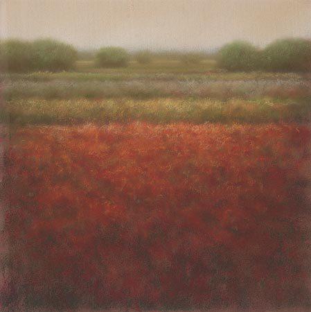 giclee-hans-dolieslager-rood-veld