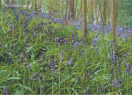 giclee-joke-frima-wilde-hyacinten