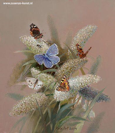 giclee-rein-pol-vlinderstruik