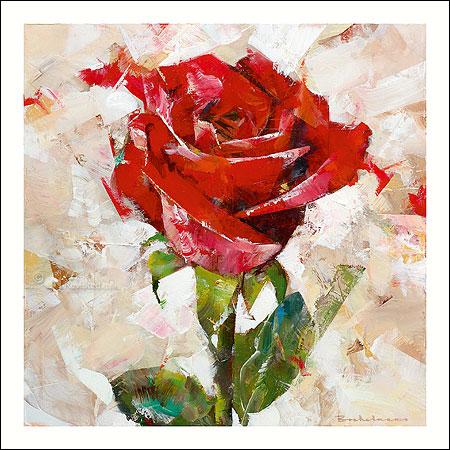 kaart-dorus-brekelmans-roos